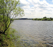 Image of SCOUT DIKE RESERVOIR